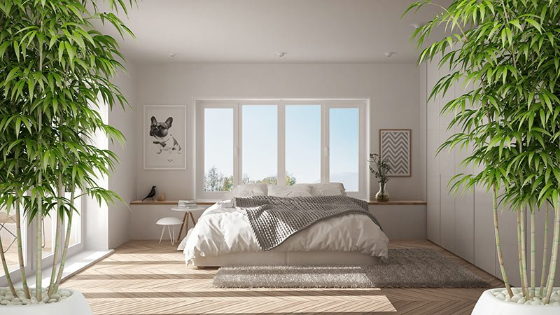 What Exactly is Bamboo Bedding?